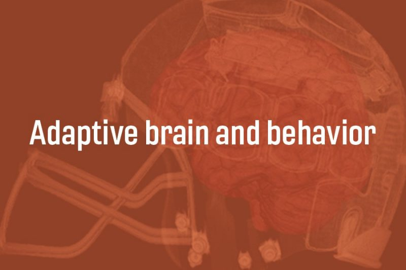 adaptive brain and behavior